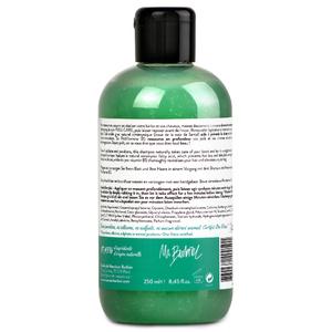Shampoing Homme Full Care Shampooing de soin 2-en-1 Barbe et Cheveux pour Hommes