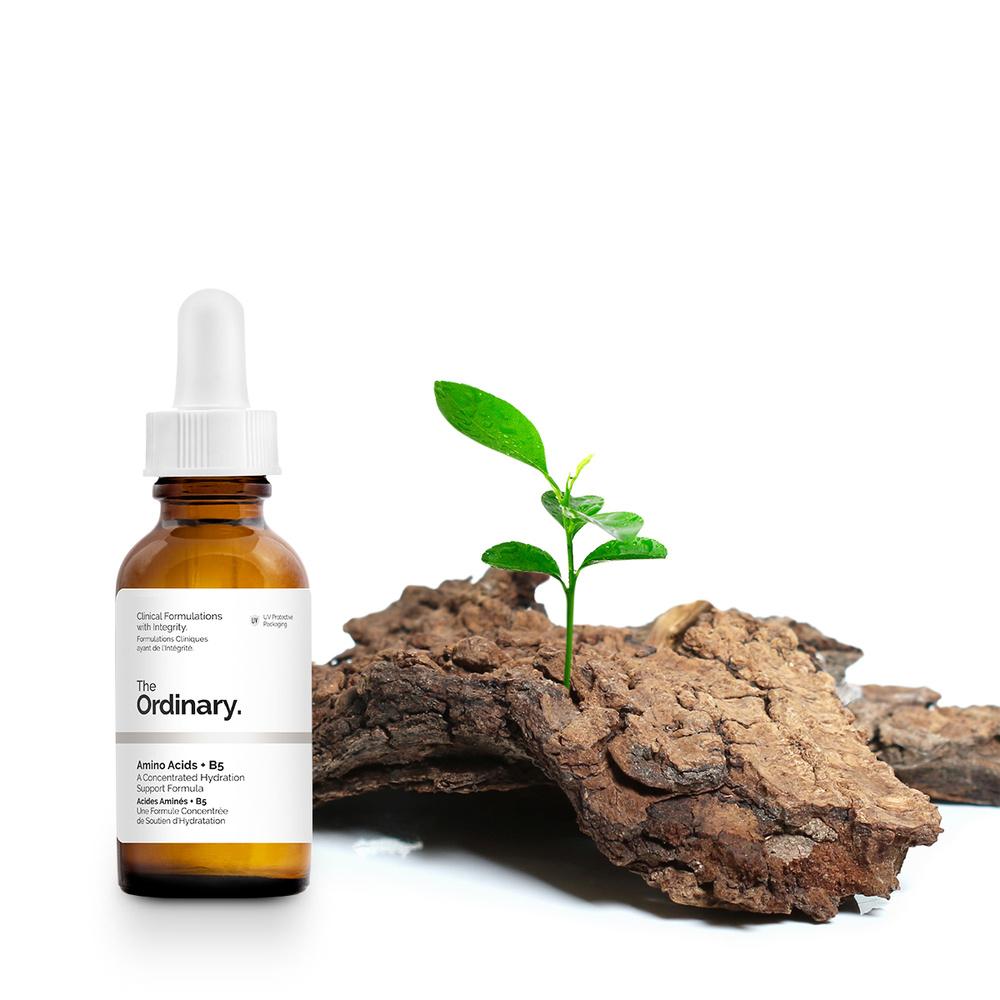 The Ordinary Acides Aminés + B5 Sérum Hydratant Flacon 30ml